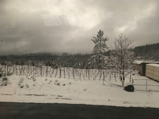 View of a winery, covered in snow on the Amtrak Train.